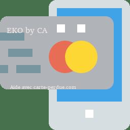Eko Carte perdue ou volée