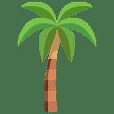 Perte Carte Palm Bus