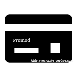 Pormod Carte Perdue